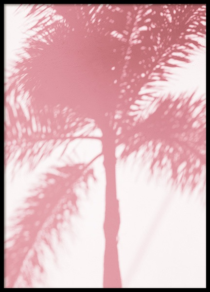 Pink Palm Shadow Poster nel gruppo Studio Collections / Studio Coast to Coast / Miami presso Desenio AB (10768)