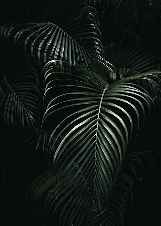 Dark Green Palm Leaves No1 Poster / Fotografia presso Desenio AB (3772)