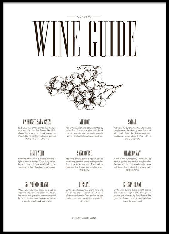 Poster per la cucina wine guide | Quadro per la cucina, elegante ...