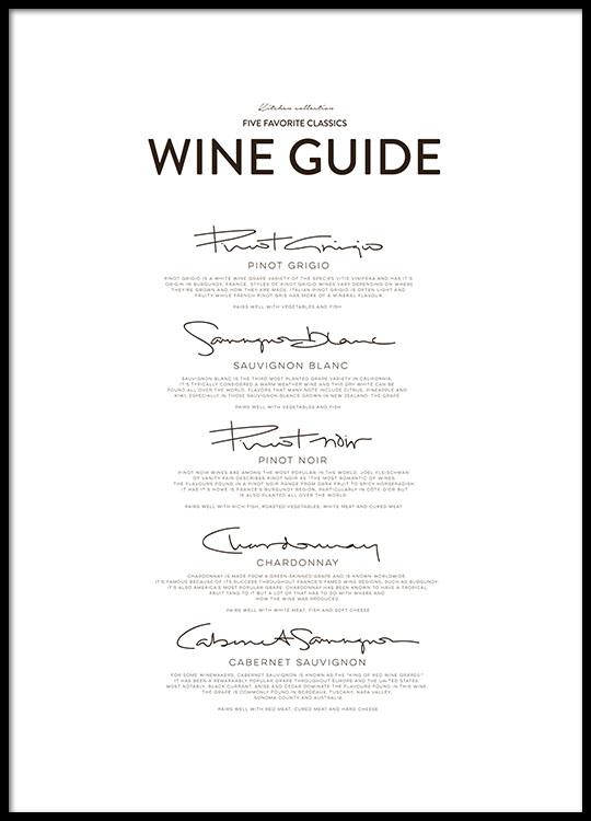 Bel quadro per cucina con una guida alle diverse varietà di uva, da ...